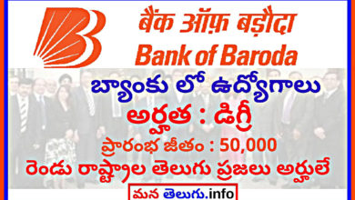 bob-recruitment-in-telugu